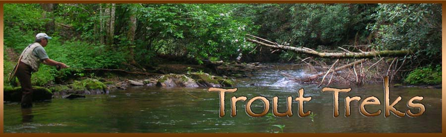 Trout Treks in the Mountains